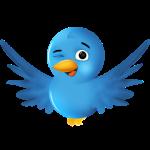 Guiño Twitter