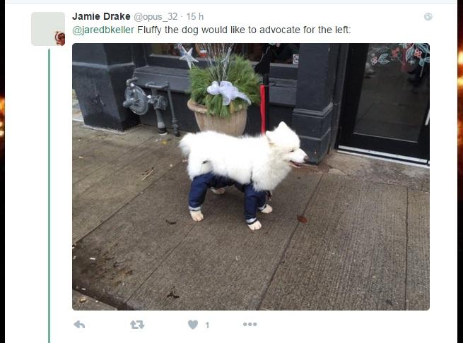 pantalones perro cuqui